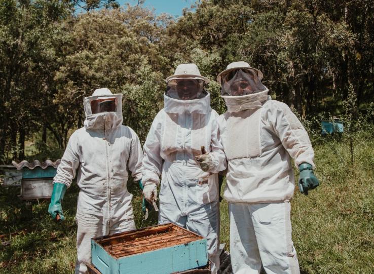 Nachhaltige Geschenkboxen von ecogift